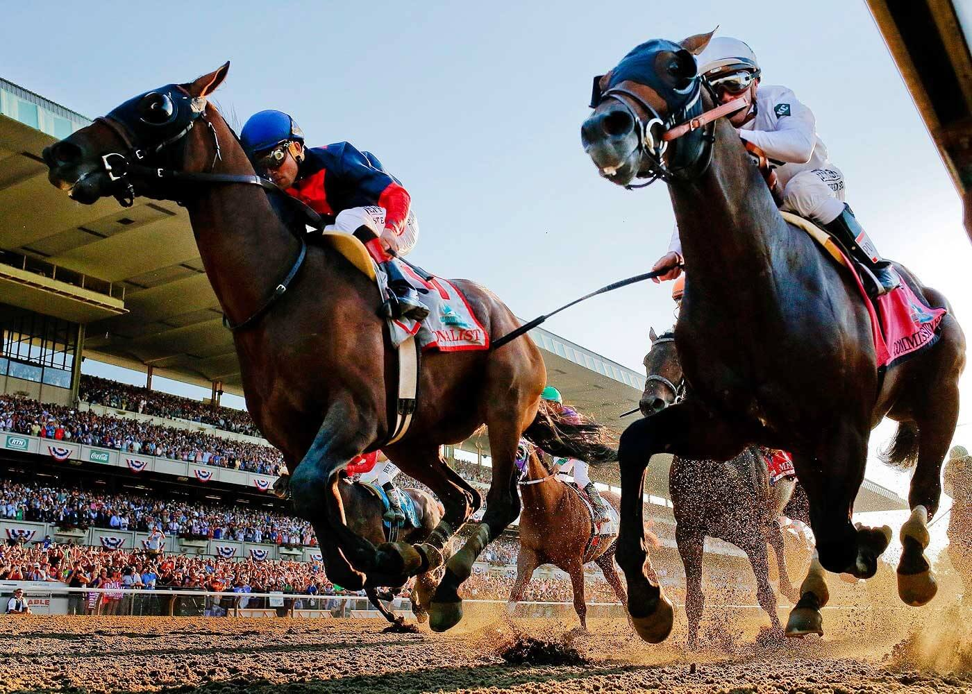 Horse racing 101 betting trends college football parlay betting